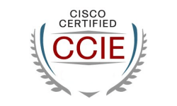 Cisco Certified Internetwork Expert